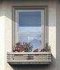 窓のフラワーボックス